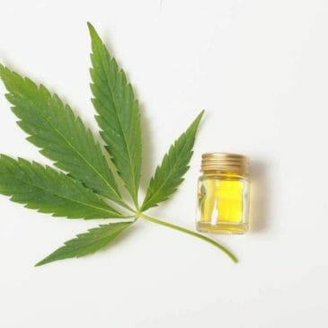 How Do CBD Products Work?