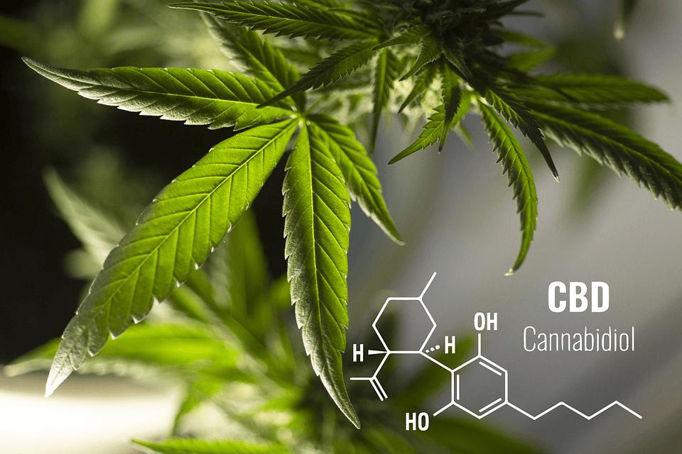 CBD Cannabidiol molecule